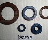 Сальники двигателя 253FMM Korsar комплект (35x52x7;22x31x5;22x34x7;12x18x5;12x24x10)
